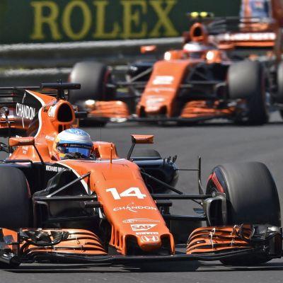 McLarenin Fernando Alonso ja Stoffel Vandoorne vauhdissa Unkarissa.