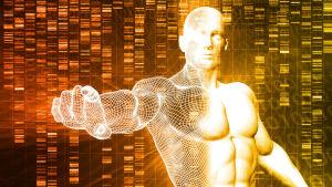 Grafisk framställning av en genmodifierad människa.