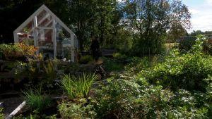 En trädgård