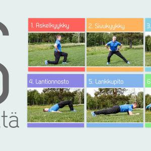 Kehonpainoharjoittelun kuusi perusliikettä
