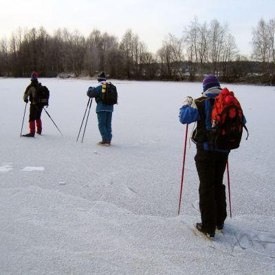 Långfärdsskridskoåkare på isen