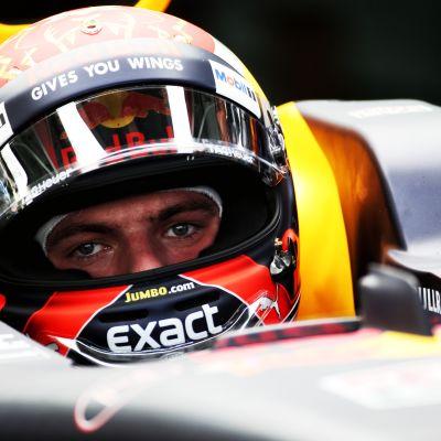 Max Verstappen autossa.