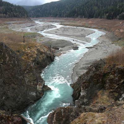 Yhdysvaltain luoteiskulmassa Tyyneen mereen laskevan Elwha joen vuonna 2014 poistetun voimalapadon jäänteitä maaliskuussa 2017.