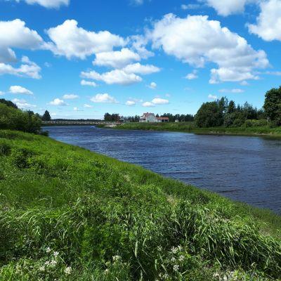 Kyrönjoki 5. kesäkuuta 2018
