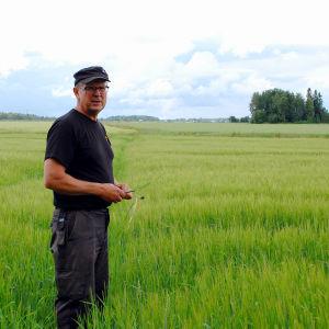 Mikael Melin i ett kornfält