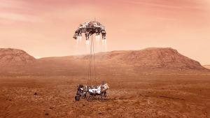 Perseverance sänker sig ned till Mars yta hängande från kablar.