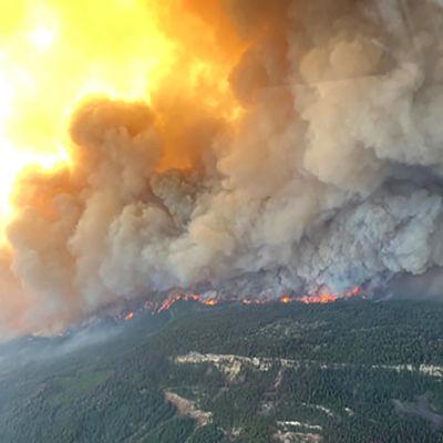 Skogsbränder i British Columbia i västra Kanada. Mer än 170 bränder rasade i provinsen den 4 juli 2021.