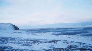 Snölandskap i Sibirien