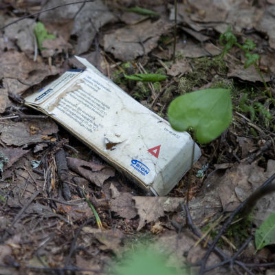 Lääkepakkaus maassa metsässä.