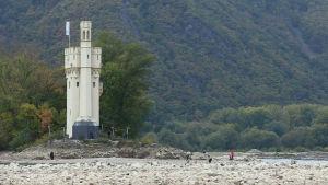 Torka i Rhen, möjlighet att gå till tornet Mäuseturm.