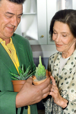 Kotikadun Mauri ja Maija ihailevat huonekasveja.
