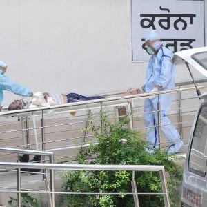 Indien slog nytt dagligt världsrekord vad gäller coronafall. Åtminstone 63 000 smittade har avlidit, vilket är tredje mest i världen.