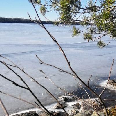 Saimaan rannassa jäät ovat heikkoja tai täysin sulia.