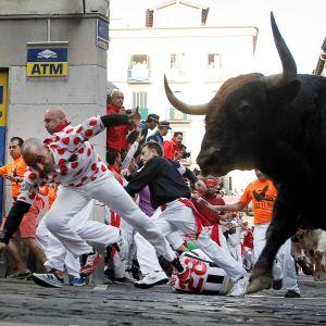 Män försöker springa undan tjurarna längs en gata i Pamplona.