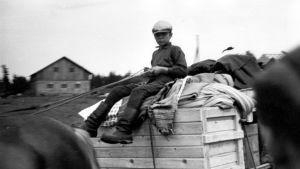 Evakkopoika hevosen ohjaksissa tavarakuorman päällä