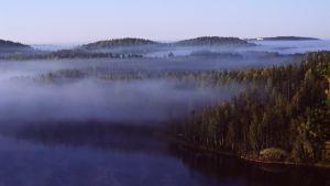 Ett åslandskap i Puumala med skog, sjö och dimma som hänger över trädtopparna.