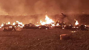 Ett oljerör exploderade i Mexiko.