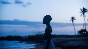 Chiron (Alex R. Hibbert) står på en sandstrand och tittar ut över havet.