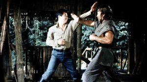 Chuck Norris slåss
