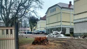 Stubbe vid Uncan i Ekenäs