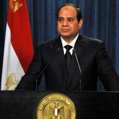 Abdel Fatah al-Sisi 15 februari 2015