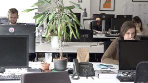 Arbetstagare på ett coworkingkontor i Riga sitter försjunkna i sitt arbete.