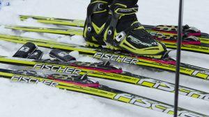 Skidskor i skidor.