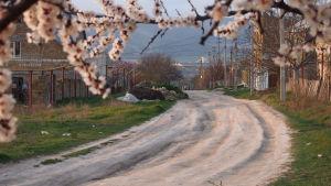 Kylänraitti Fontanyn asuinalueella Simferopolissa. Neuvostoaikana paikalla oli kolhoosi.