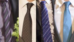 Teron Kuuslan solmioita
