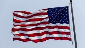 USA:s flagga.