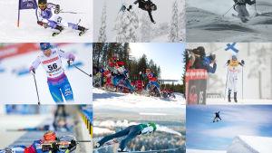 Kuvakollaasi eri talvilajien urheilusuorituksista.