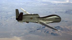 En amerikansk drönare av modellen RQ-4 Global Hawk.