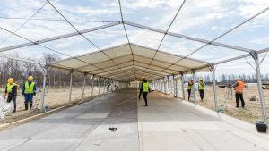 Några personer lägger upp ett tält genom talkoarbete under sommarmötet i Björneborg 2017.