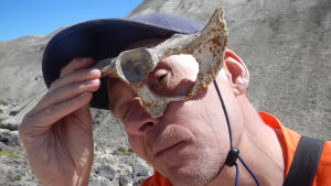 Den lilla paleontologen