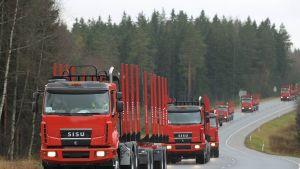Sisu timmerbilar på en landsväg