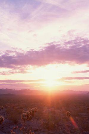 RSO:n kamarimusiikkifestivaali Aurinko nousee idästä