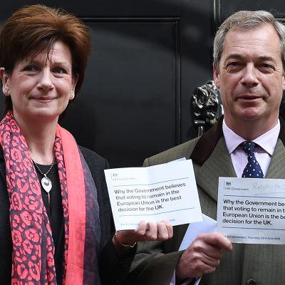 Ukips EU-parlametariker och ex-partiledare Diane James