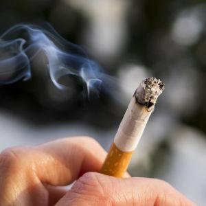 Tupakka palaa