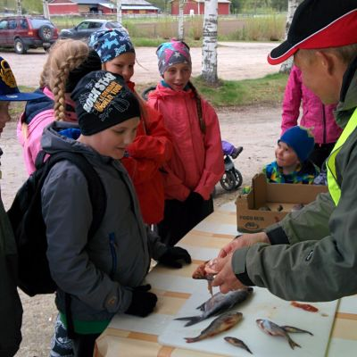 lapset tunnistavat kaloja