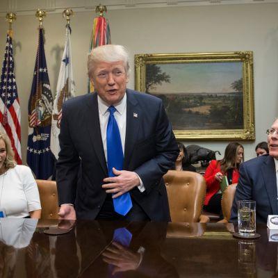 Helluntaisaarnaaja, New Christian Destiny Center -järjestön johtaja Paula White sekä Kansallisen kiväärijärjestö NRA:n johtaja Wayne LaPierre edustavat niitä ryhmiä, joita Trumpin Valkoisessa talossa kuunnellaan.