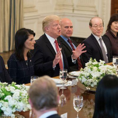 Presidentti Donald Trump lounasti turvallisuusneuvostomaiden YK-suurlähettiliden kanssa keväällä.