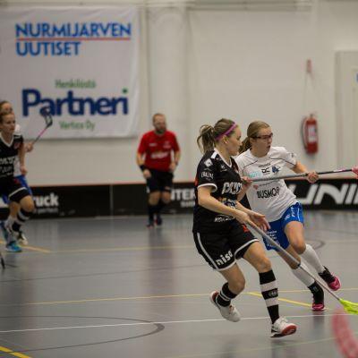 Daniela Westerlund