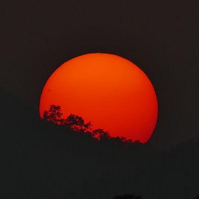 Solen som går ned. Solfläckar syns på solskivan.