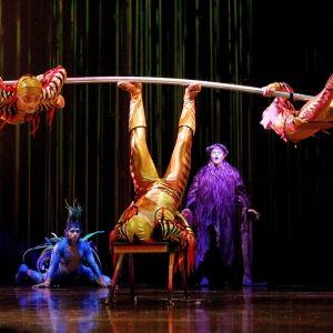 Föreställningen Varekai i Bogota i Colombia 20.3.2013.