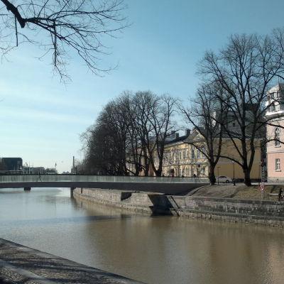 Biblioteksbron i Åbo våren 2014