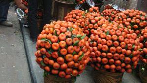 Tangerinbuskar är omtyckta prydnader under nyåret.