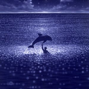 En delfin och en pojke simmar i ett glittrande hav.