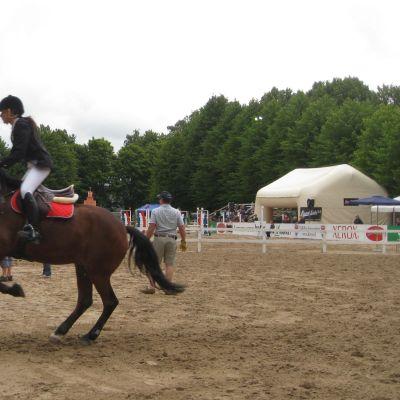 En häst och ryttare som hoppar över ett övningshinder