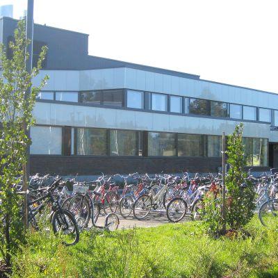 Koulun pihassa on paljon pyöriä telineessä.