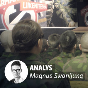 Analys Magnus Swanljung